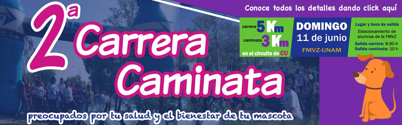 Facultad de Medicina Veterinaria y Zootecnia // UNAM